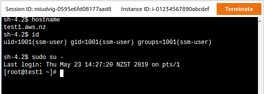 AWS NZ - Using SSM Session Manager for interactive instance access